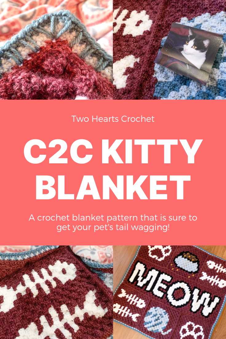 C2C Kitty Blanket Pin